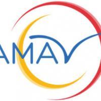 Amav 2 300x212